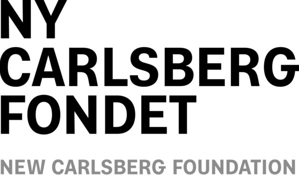 Ny Carlsbergfondet logo